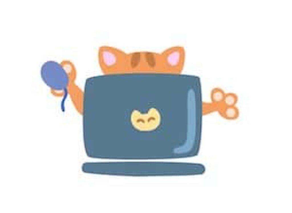 パソコンで編集するネコ